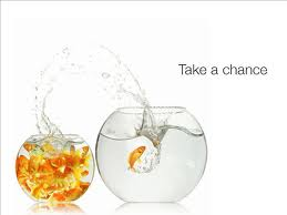 Take a chance - Goldfish jumping out of fish bowl
