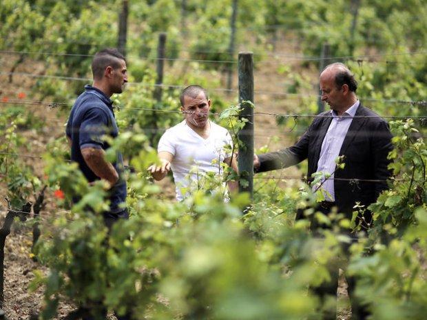 Italian Wine by Inmates