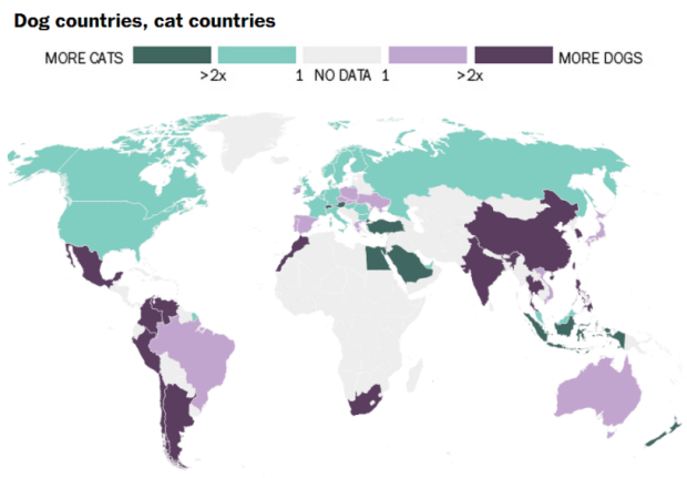 Dog Cat Countries
